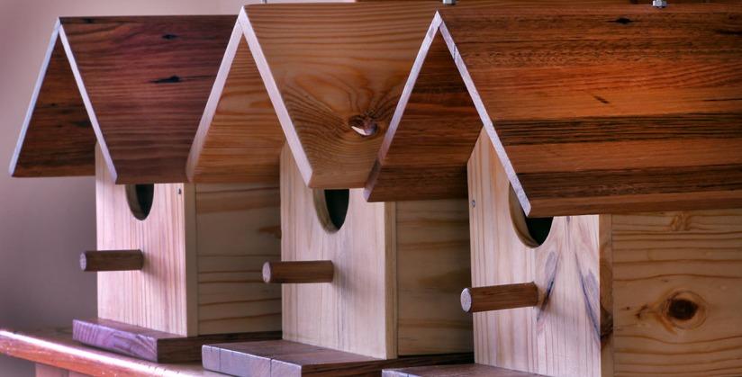 Row of Bird Houses