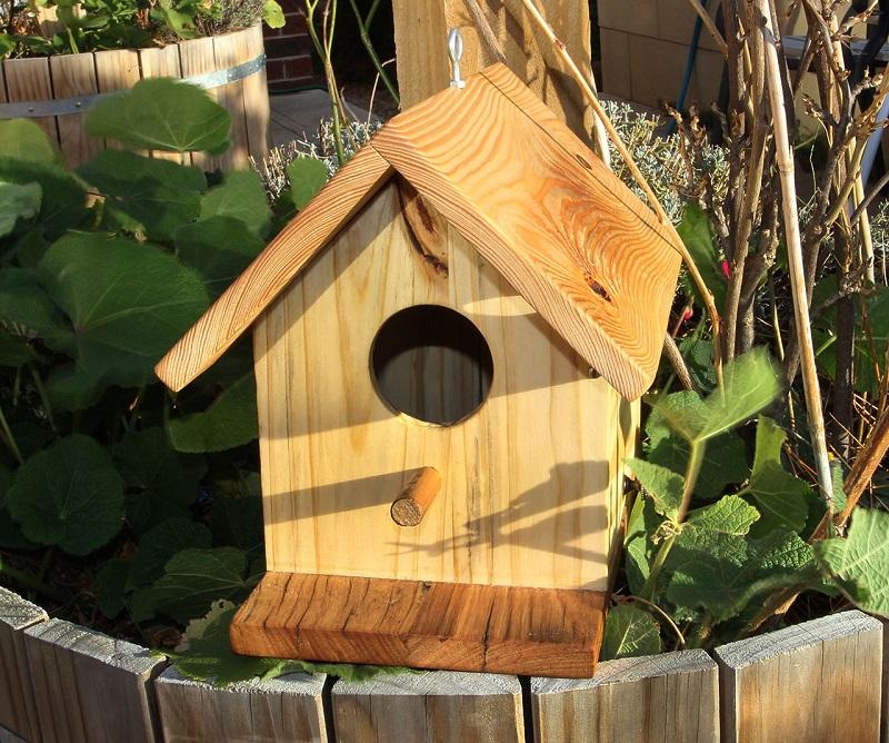 Sparrow House 04